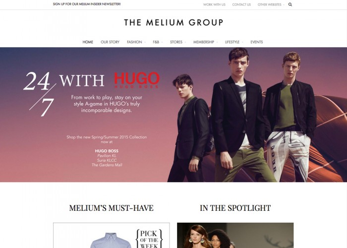 The Melium Group