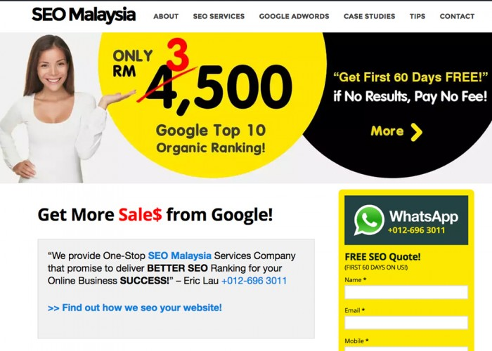 SEO Malaysia | SEO Services | SEO Company : Ericanfly