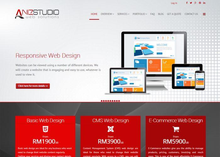 Aniz Studio Web Design